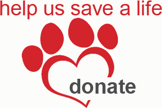 Donate to New Hope Animal Rescue and help us save a life